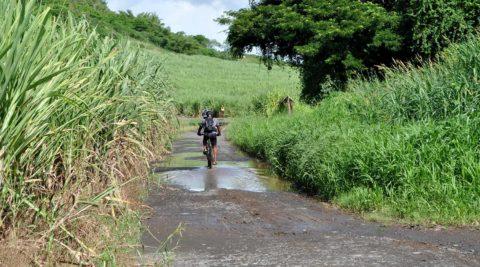 <b>Mit dem Fahrrad</b> Martinique entdecken